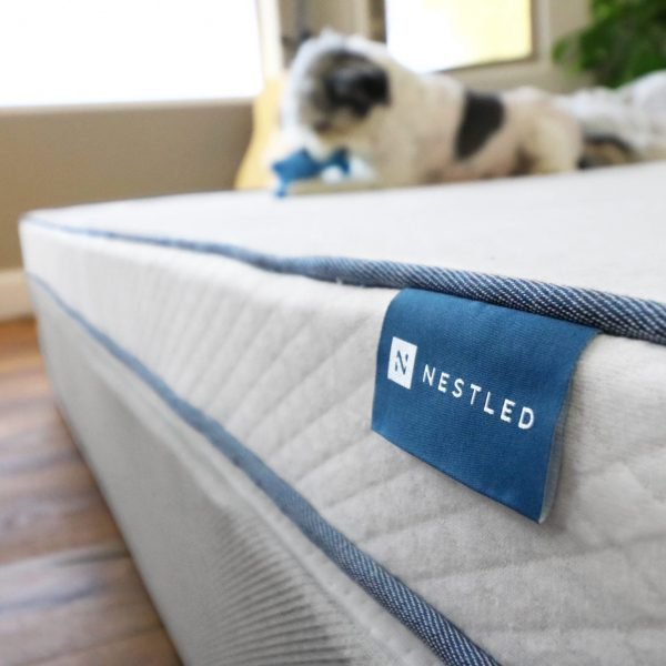 A happy puppy playing on top of a Nestled organic mattress topper